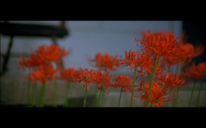Screen Shot 2013-06-20 at 16.33.30